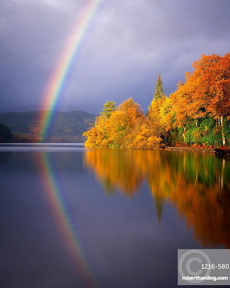 Autumn at Loch Ard, Trossachs, Scotland, United Kingdom, Europe