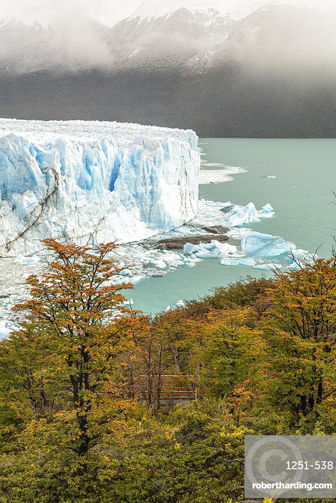 Perito Moreno with trees, Lago Argentino and mountains in autumn, Los Glaciares National Park, UNESCO World Heritage Site, Santa Cruz, Argentina, South America