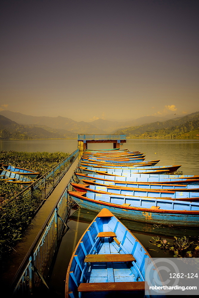 Boats at harbour on Fewa Lake, Pokhara, Nepal, Asia