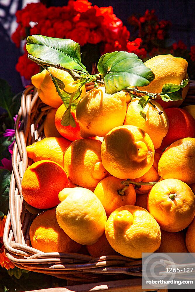 Fresh local basket of lemons in Manarola in Cinque Terre, province of La Spezia, in the Liguria region of Italy, Europe