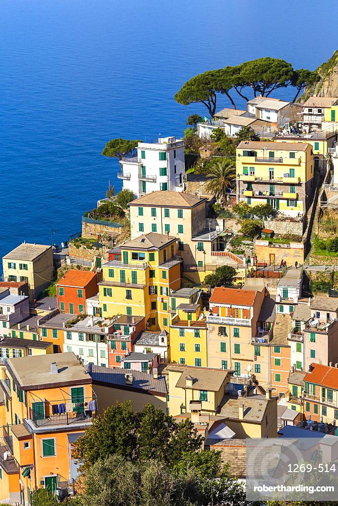 Traditional houses of Riomaggiore, Cinque Terre, UNESCO World Heritage Site, Liguria, Italy, Europe