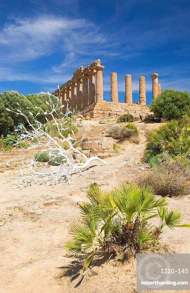 View to the hilltop Temple of Hera, aka Juno, in the UNESCO listed Valley of the Temples, Agrigento, Sicily, Italy