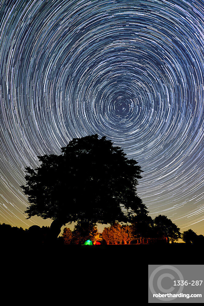 Circumpolar star trail with a tree silhouette and a campfire in the background, Emilia Romagna, Italy, Europe