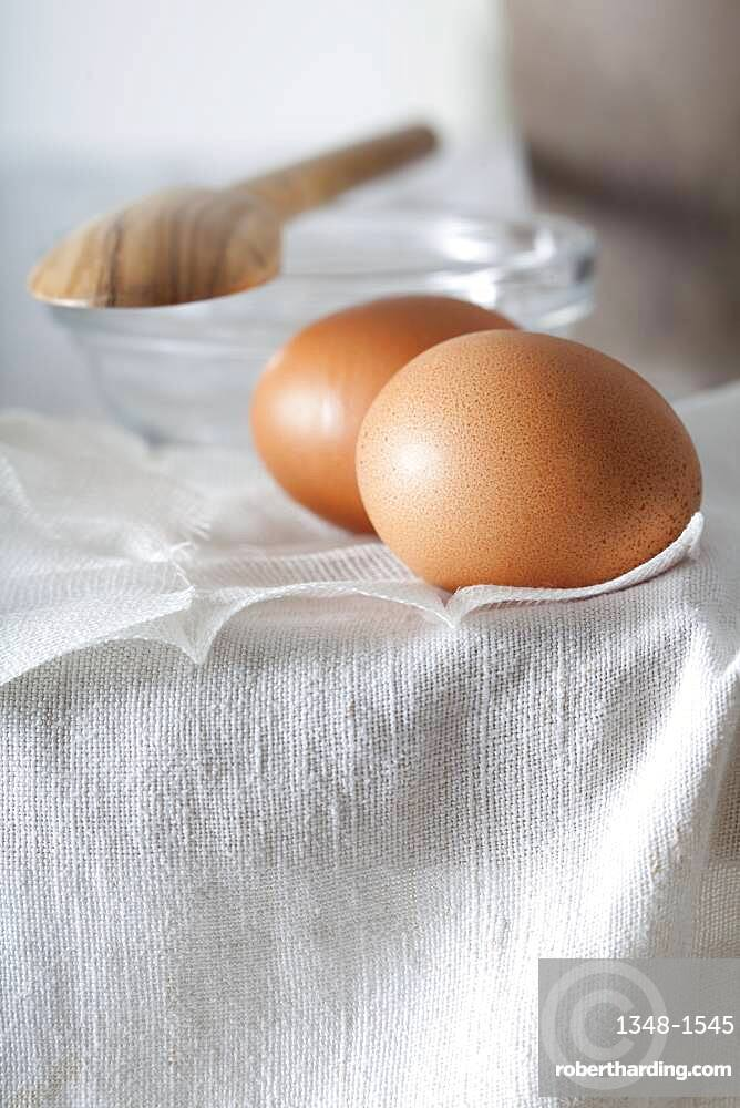 Illustration of organic natural cosmetics. Eggs enter in the composition of natural recipes such as masks (face, hair).