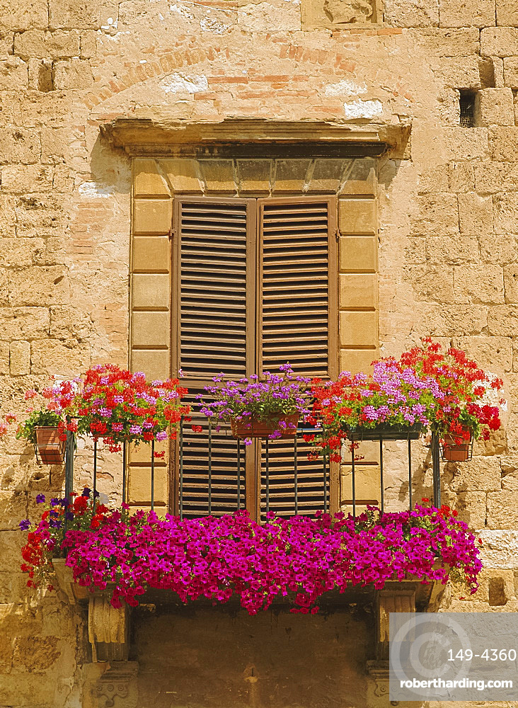 Flower covered balcony, Colle di Val d'Elsa, Tuscany, Italy