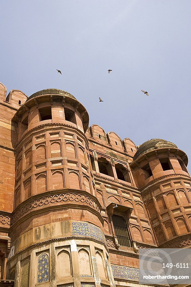 Birds flying around the towers of the Agra Fort, UNESCO World Heritage Site, Agra, Uttar Pradesh, India, Asia