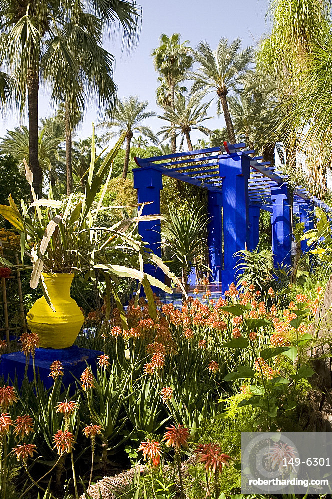 A cobalt blue pergola surrounded by cactuses and palm trees in the Majorelle Garden, Marrakech, Morocco, North Africa, Africa