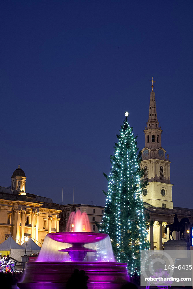 A Christmas tree and fountains lit for a Chirstmas concert in Trafalgar Square, London, England, United Kingdom, Europe
