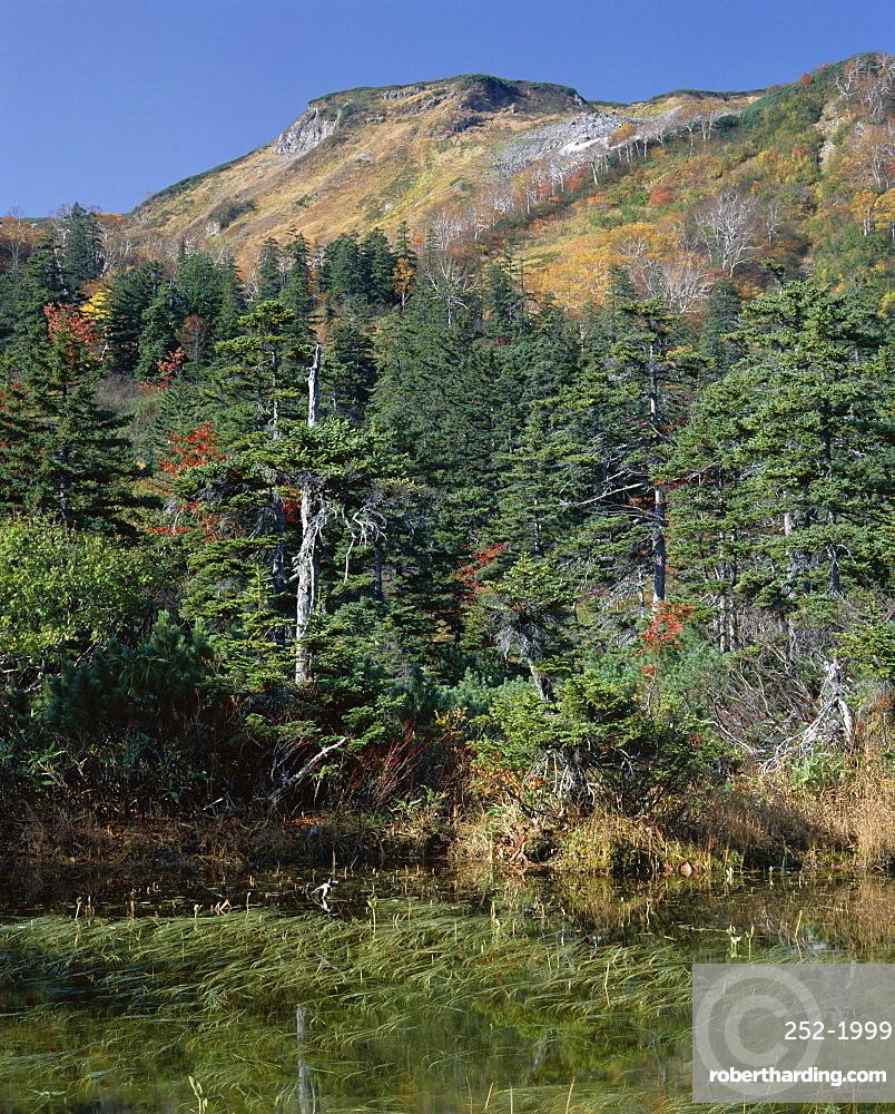 Kogen Onsen, Daisetsuzan National Park, island of Hokkaido, Japan, Asia