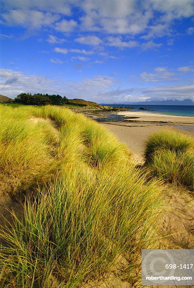 Dunes and grasses, Mellon Udrigle, Wester Ross, Highlands Region, Scotland, UK, Europe