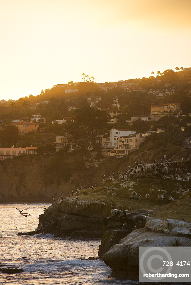 La Jolla, San Diego, California, United States of America, North America