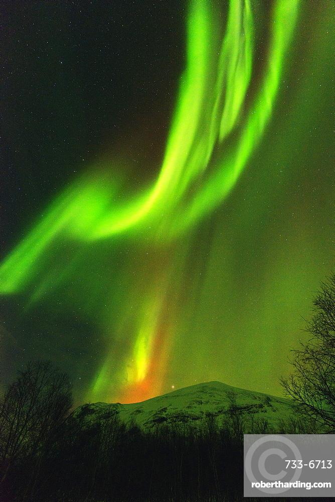 Aurora borealis (Northern Lights) on Kungsleden (Kings Trail), Abisko National Park, Lapland, Arctic Circle, Sweden, Scandinavia, Europe