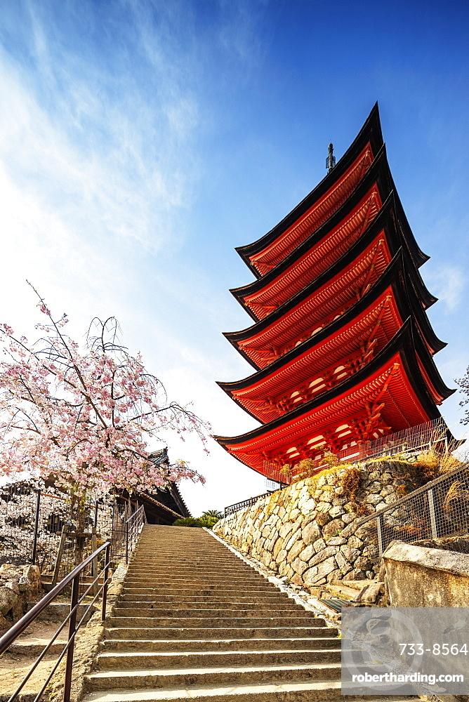 Cherry blossom at Komyoin five story pagoda, UNESCO World Heritage Site, Miyajima Island, Hiroshima Prefecture, Honshu, Japan, Asia