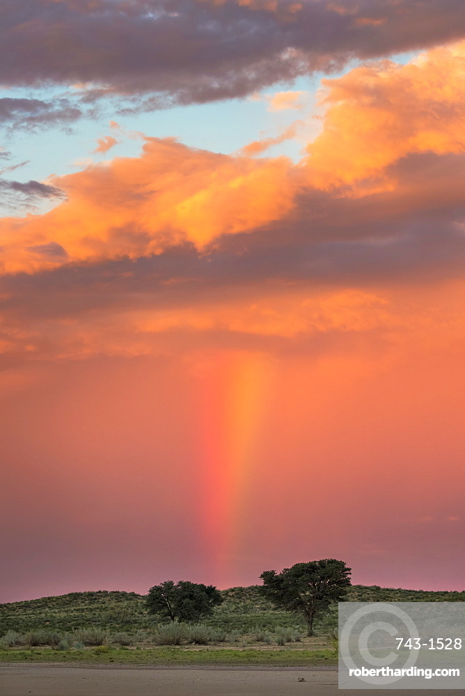 Sunset and storm over Kgalagadi Transfrontier Park, Northern Cape, South Africa, Africa