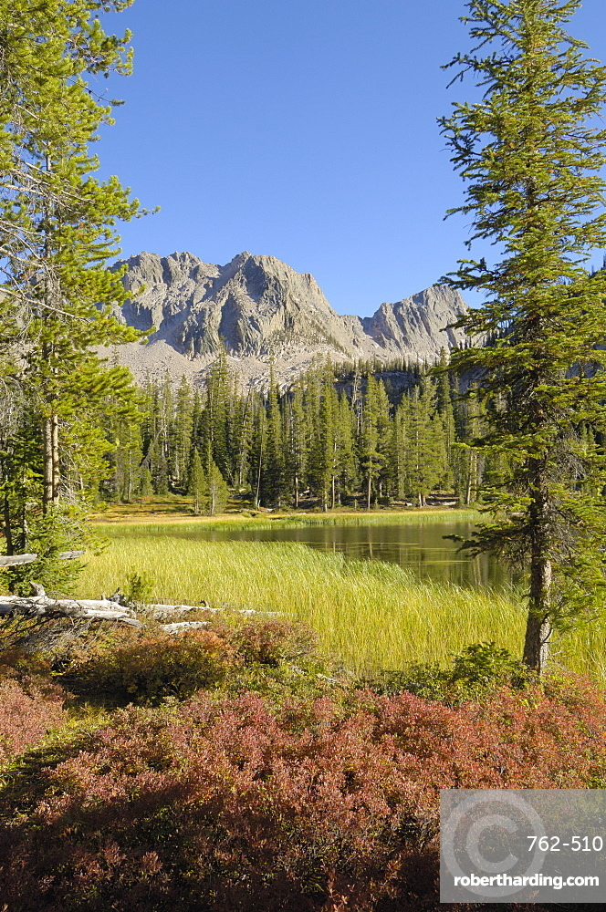 Fall colours around Lower Cramer Lake, Sawtooth Mountains, Sawtooth Wilderness, Sawtooth National Recreation Area, Rocky Mountains, Idaho, United States of America, North America