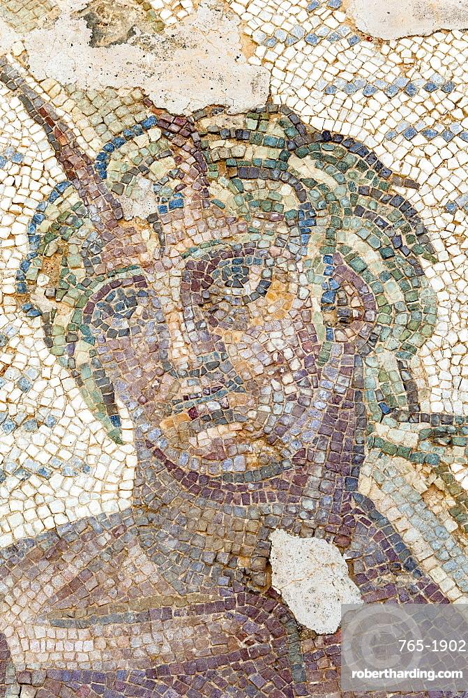 Roman mosaic, Carthage National Museum, Byrsa Hill, Carthage, UNESCO World Heritage Site, Tunis, Tunisia, North Africa, Africa