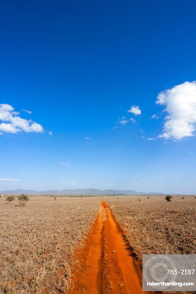 Trail in the Savannah, Tsavo West National Park, Kenya, East Africa, Africa