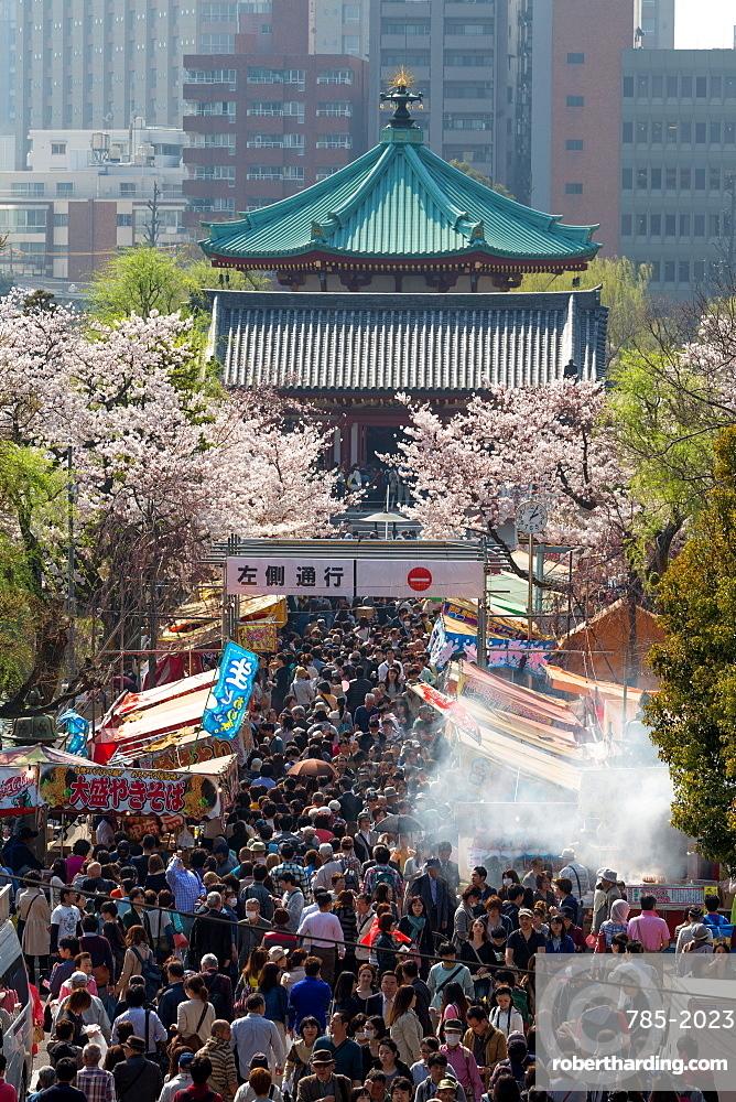 Crowds enjoying the food stalls at Ueno Park, Tokyo, Japan, Asia