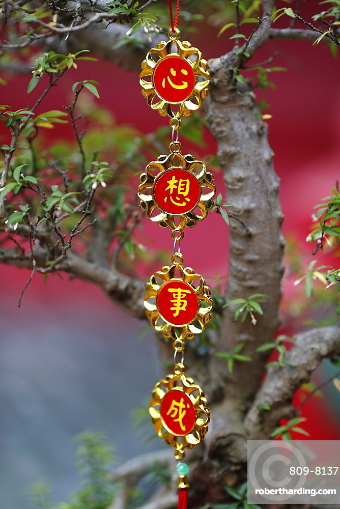Chinese New Year celebration decoration, Ho Chi Minh City, Vietnam, Indochina, Southeast Asia, Asia