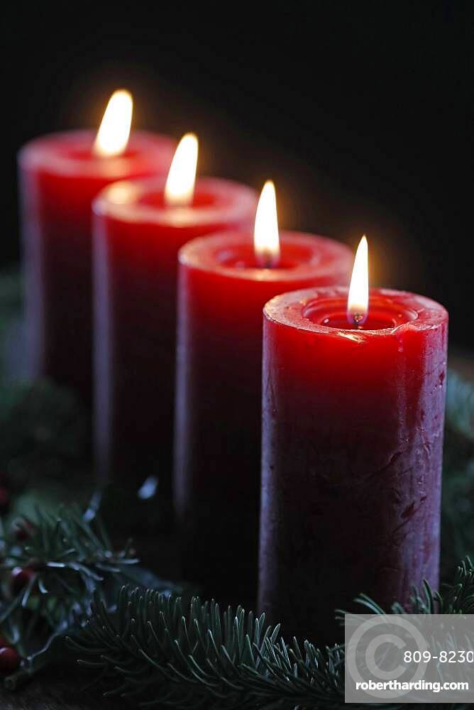 Natural advent wreath or crown with four burning red candles. Christmas composition. France.