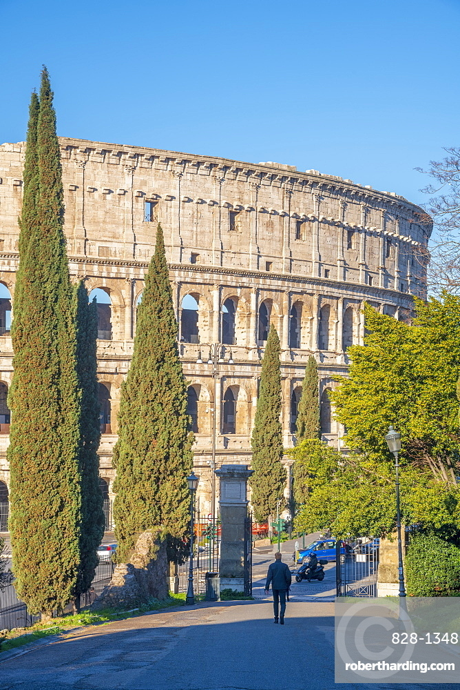 Coliseum from Parco del Colle Oppio, UNESCO World Heritage Site, Rome, Lazio, Italy, Europe