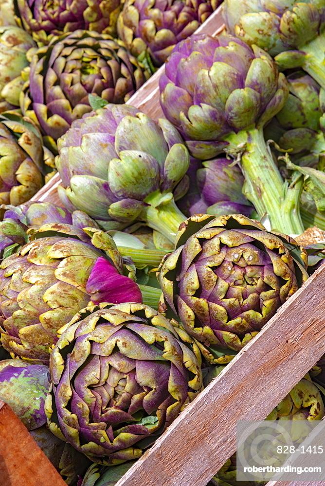 Artichokes for sale, market stalls, Campo de Fiori, Regola, Rome, Lazio, Italy, Europe