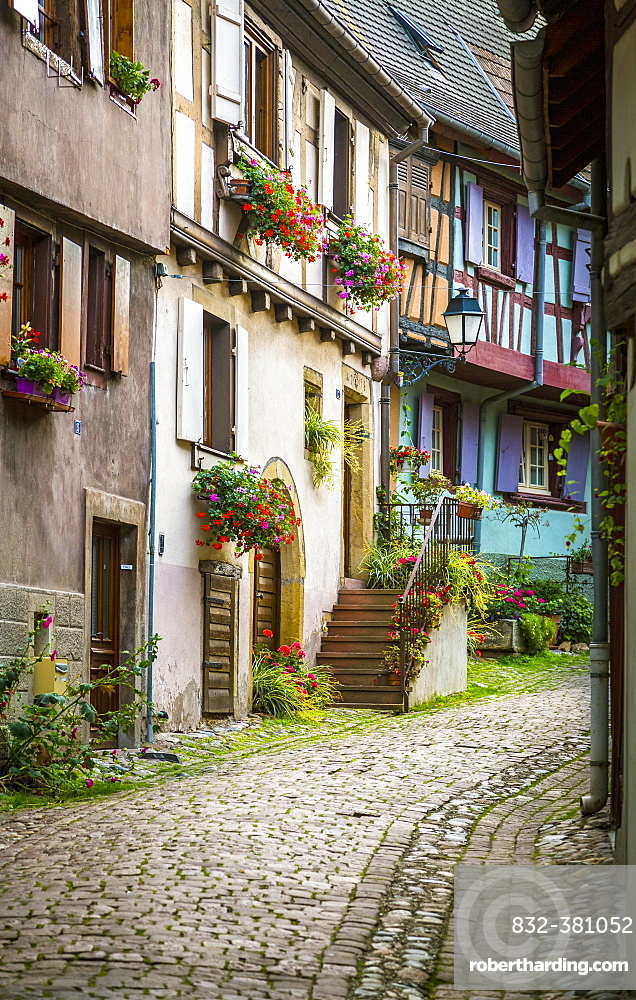 Alleyway with colourful half-timbered houses, Eguisheim, Département Haut-Rhin, Alsace, France, Europe