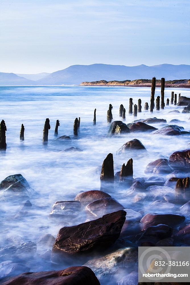 Groynes on Rossbehy Beach, Glenbeigh, County Kerry, Ireland, Europe