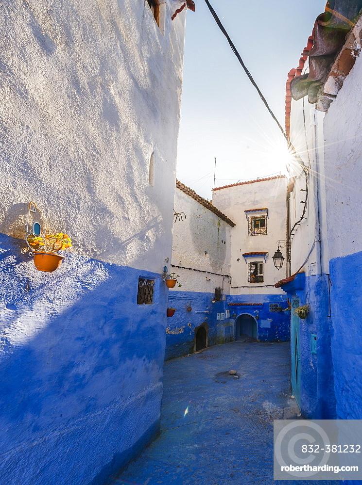 Narrow alley, blue houses, medina of Chefchaouen, Chaouen, Tangier-Tétouan, Morocco, Africa