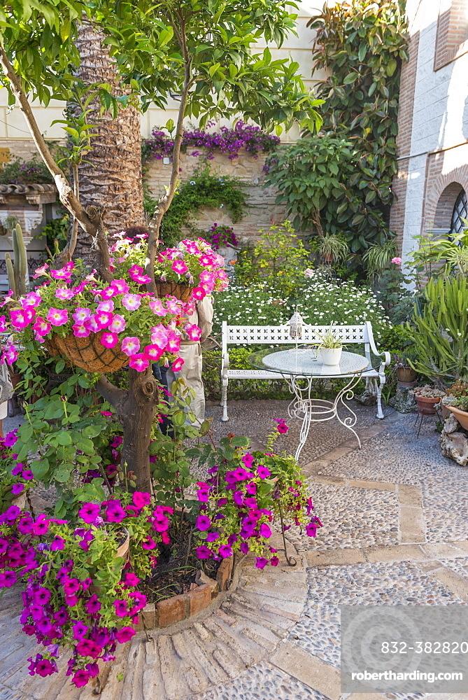 Flowers in a courtyard with a garden bench, Fiesta de los Patios, Cordoba, Andalusia, Spain, Europe