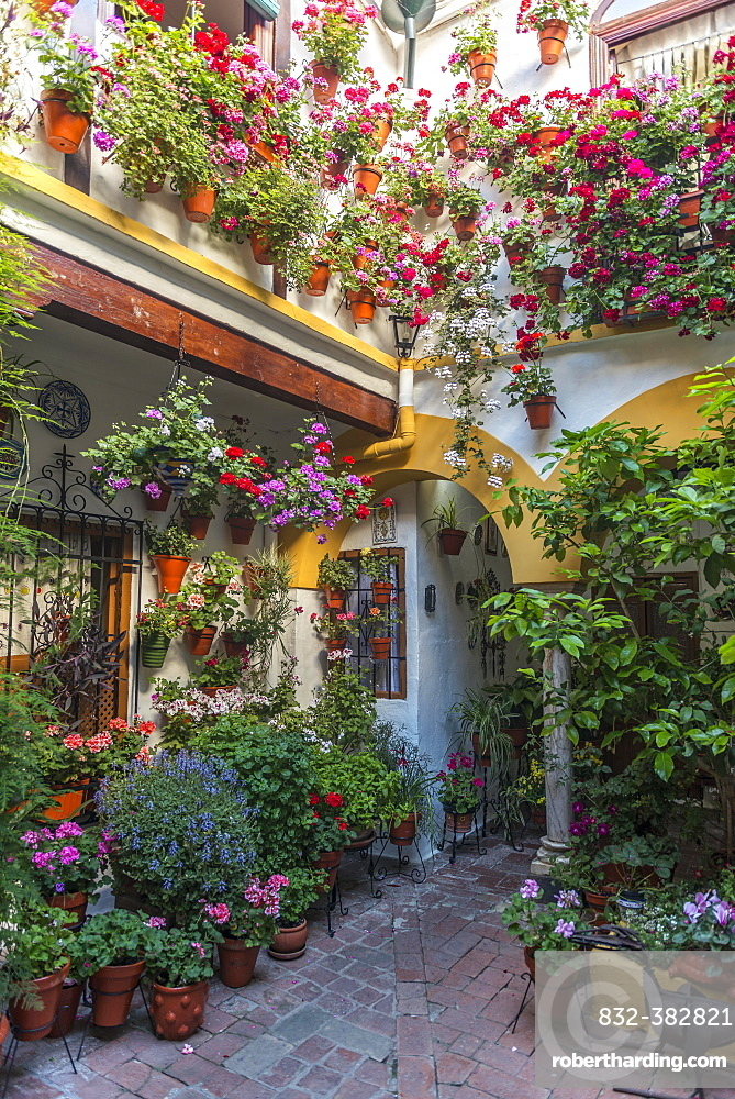 Many colorful flowers in flower pots on a house wall in the courtyard, Fiesta de los Patios, Cordoba, Andalusia, Spain, Europe
