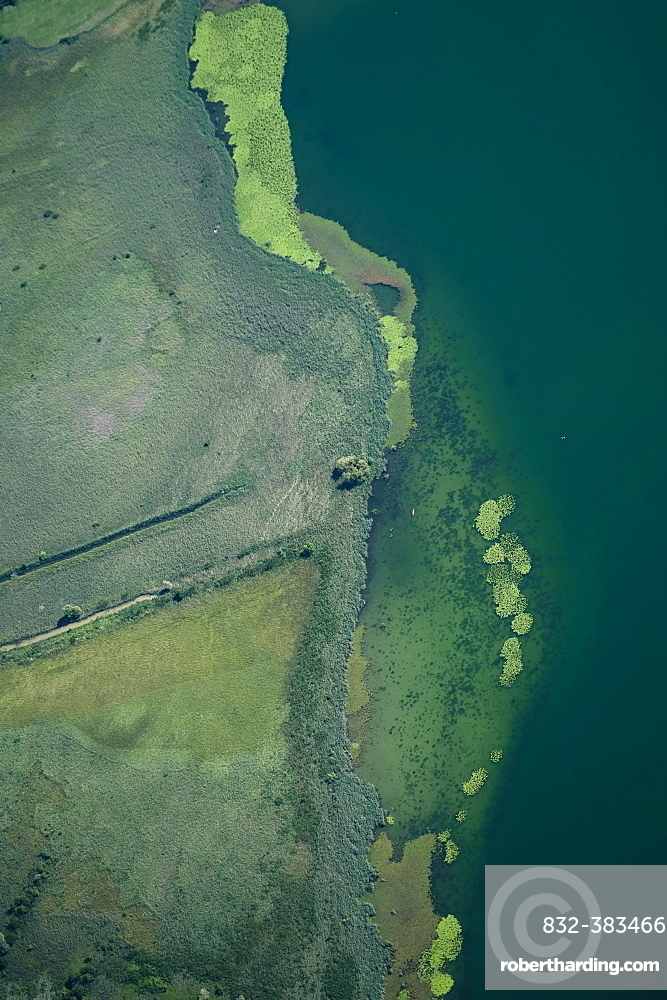 Aerial view, lake shore, Lake of Pusiano, Como Province, Italy, Europe