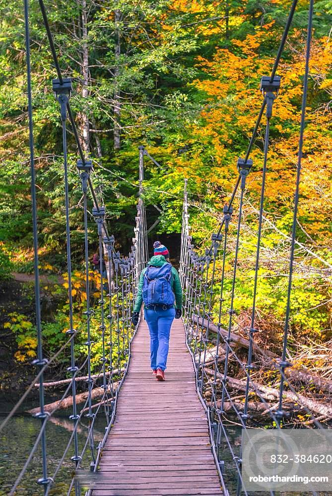 Young woman walking on a suspension bridge across a river, Grove of the Patriarchs Trail, Mount Rainier National Park, Washington, USA, North America