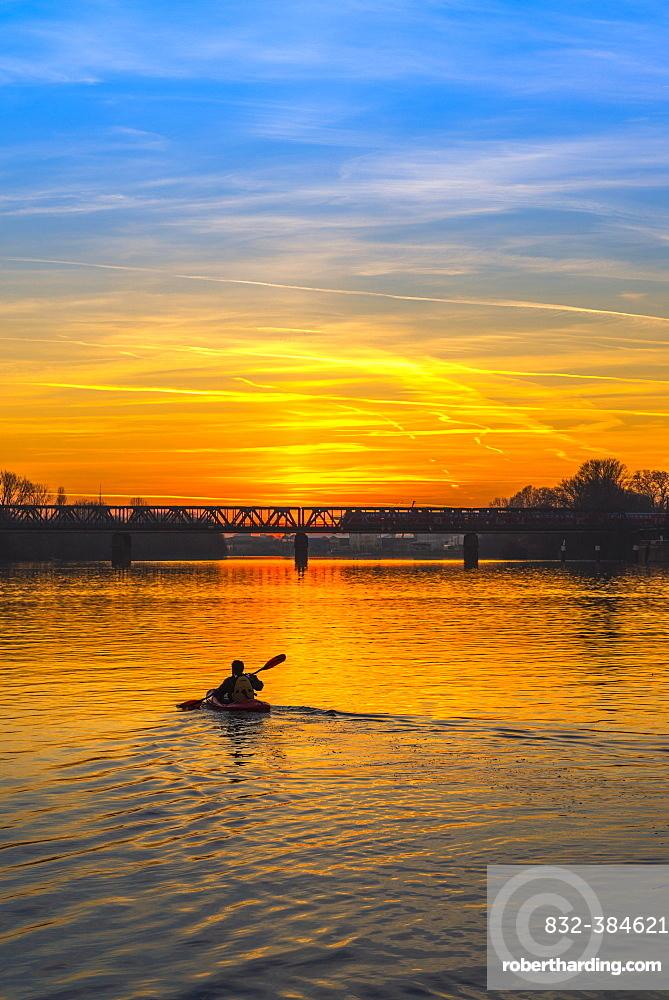 Kayaker on the Main paddles at sunset, Frankfurt am Main, Hesse, Germany, Europe