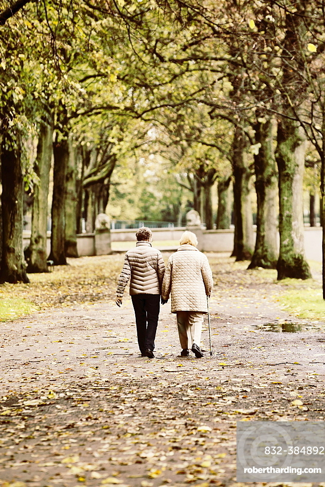 Two older women walking in autumn in the park, Cologne, North Rhine-Westphalia, Germany, Europe