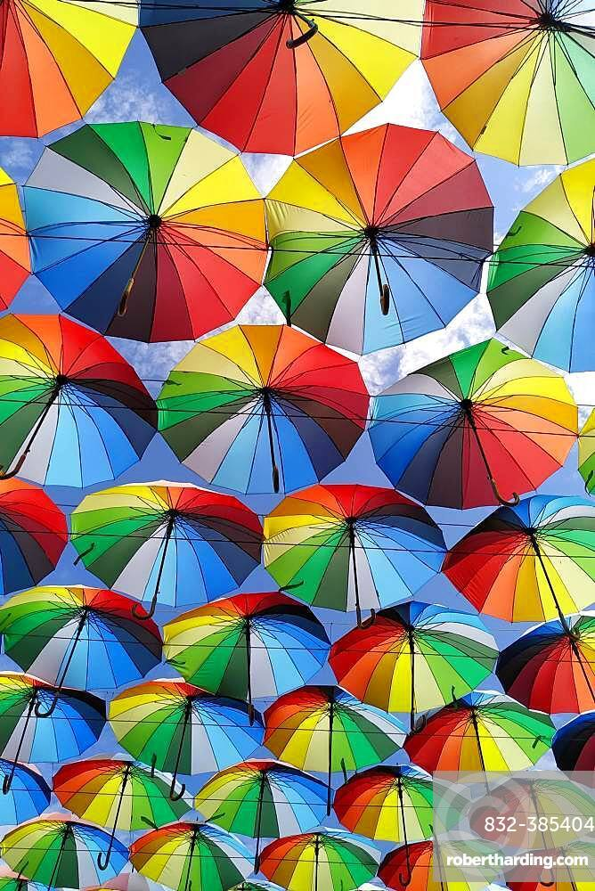 Street decoration, lots of umbrellas coloring the sky, Odessa, Ukraine, Europe