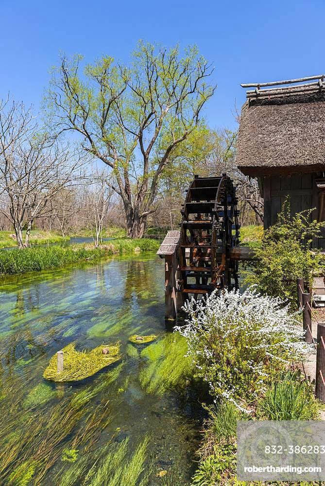 Water mill on a river, Daio Wasabi Farm, Nagano, Japan, Asia