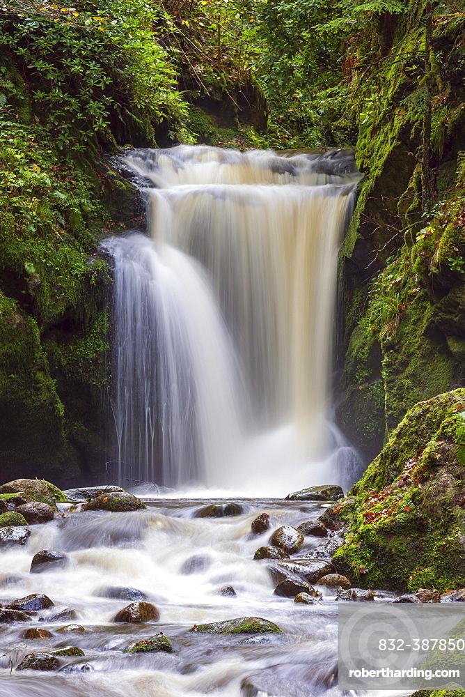 Geroldsau Waterfall, Grobbach River, Geroldsau, Baden-Baden, Northern Black Forest, Baden-Wuerttemberg, Germany, Europe