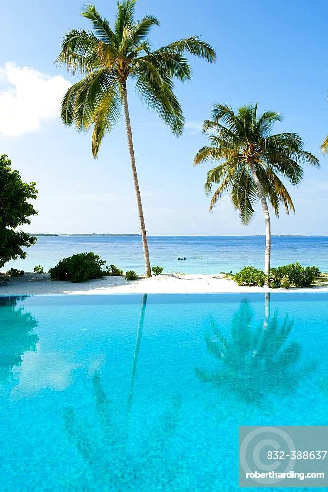 View over swimming pool to (Cocos nucifera), behind it the open sea, Filaidhoo, Raa Atoll, Maldives, Asia