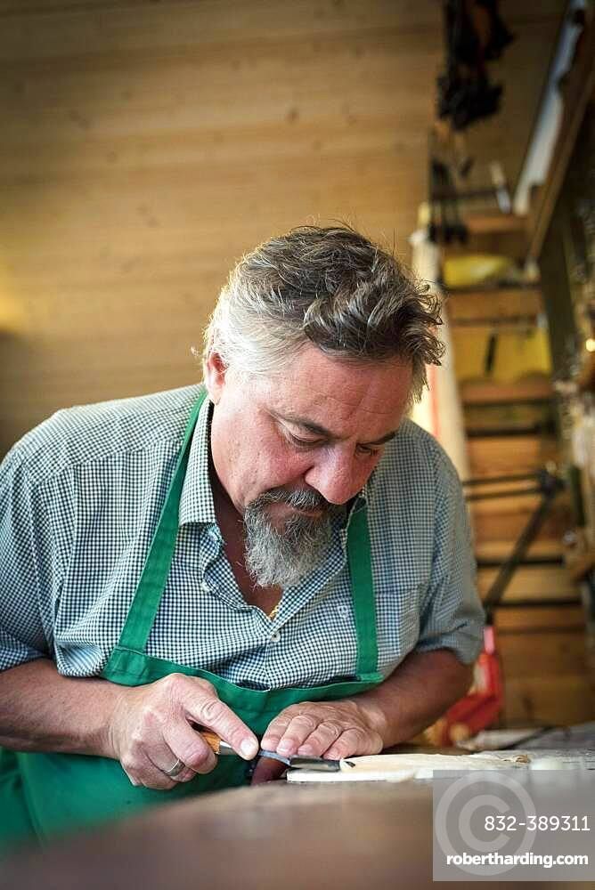 Work on the lid of the instrument, master luthier Rainer W. Leonhardt, Mittenwald, Bavaria, Germany, Europe