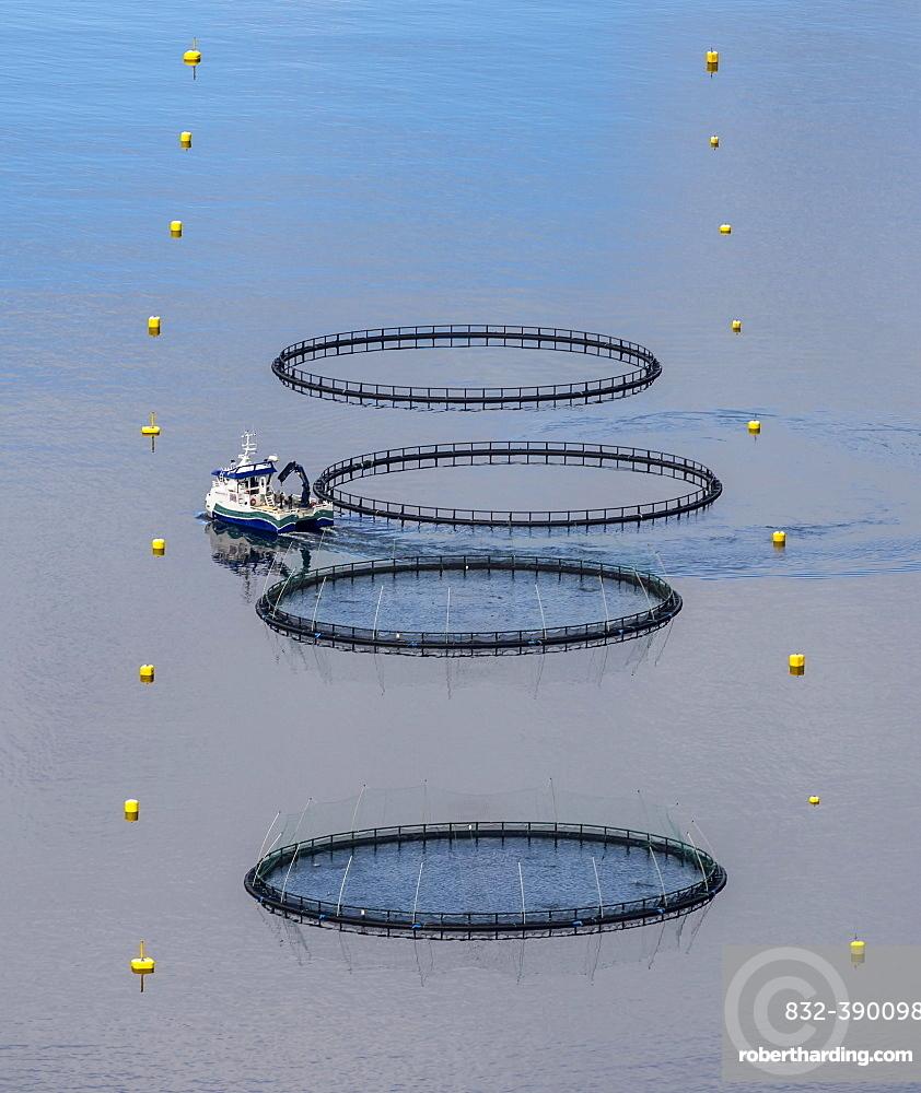 Aquaculture, fish farm in a fjord, Nordland, Norway, Europe