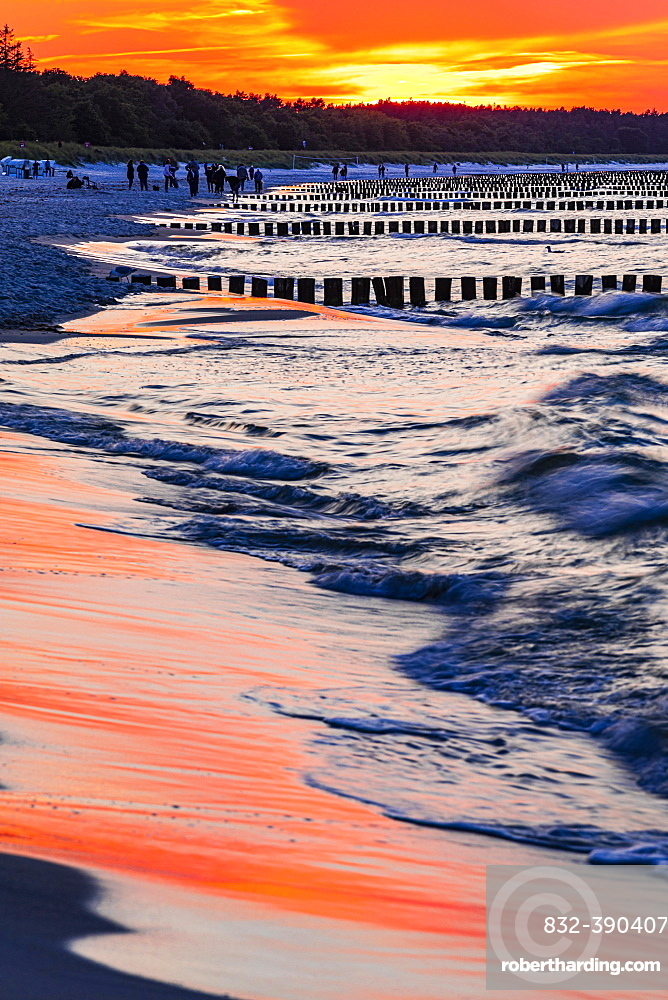 Strollers and groynes at the beach of Zingst at sunset, Zingst, peninsula Zingst, Darss, Fischland, Baltic Sea, Mecklenburg-Western Pomerania, East Germany