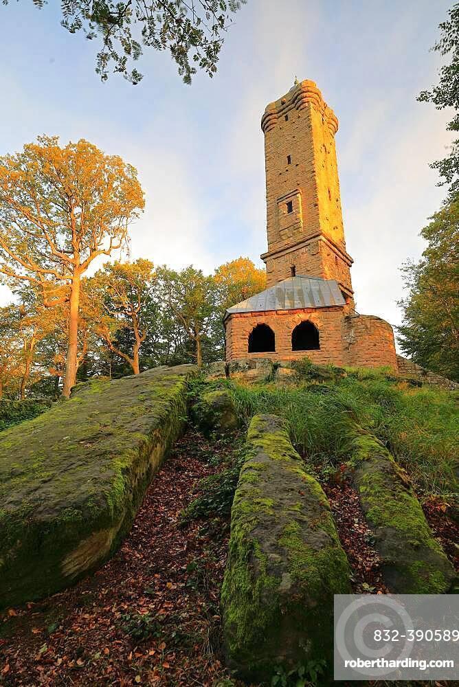 Luipoldsturm, lookout tower, Hermansbergdorf, Palatinate Forest, Rhineland-Palatinate, Germany, Europe