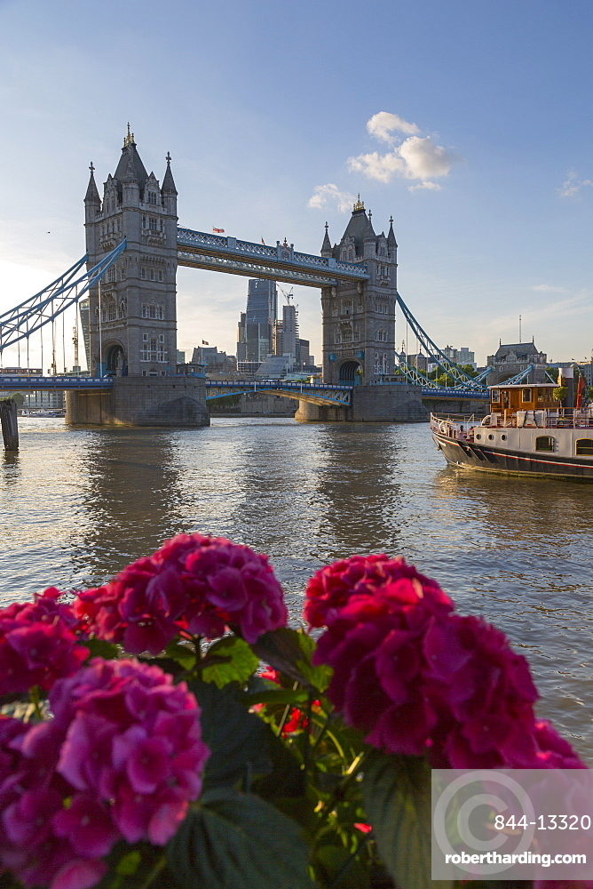Tower Bridge and City of London skyline from Butler's Wharf, London, England, United Kingdom, Europe