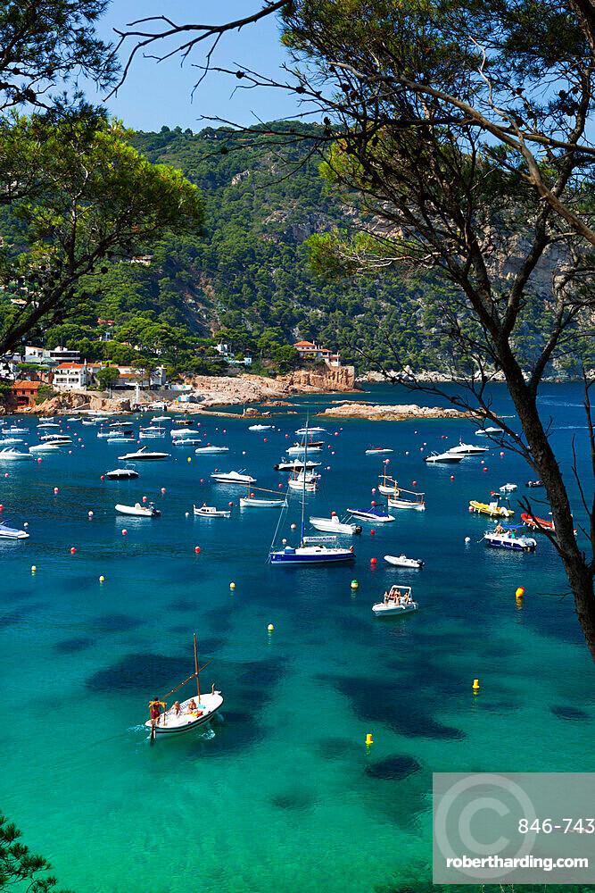 View over bay, Aiguablava, near Begur, Costa Brava, Catalonia, Spain, Mediterranean, Europe