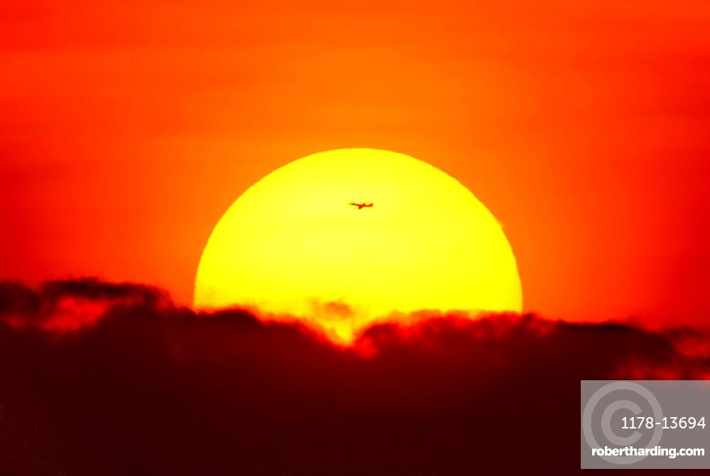 Large sun at sunset