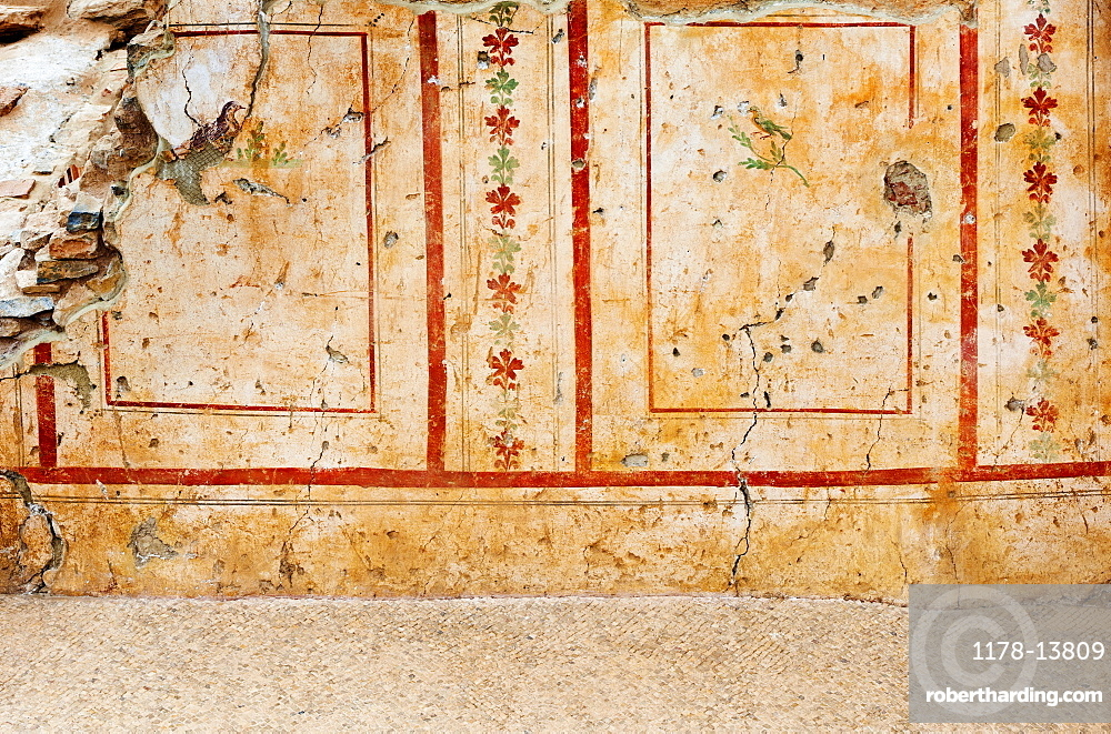 Turkey, Ephesus, Private house mural
