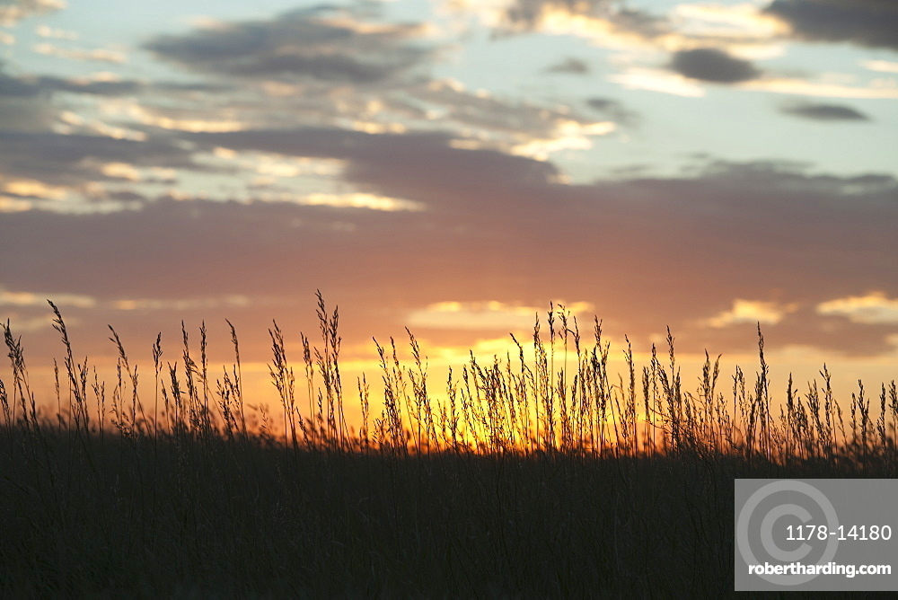 Sunset above prairie