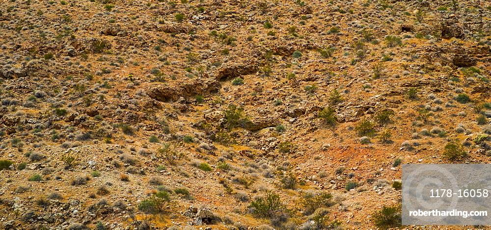 Desert landscape, USA, Utah