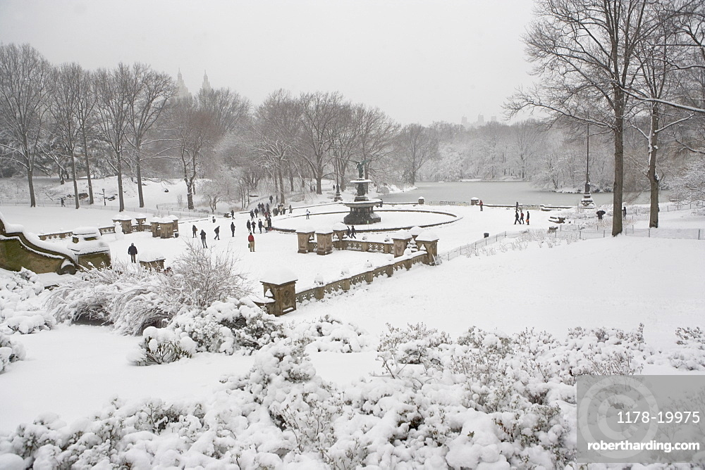 Central Park in winter